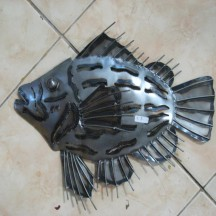 Spike Fish
